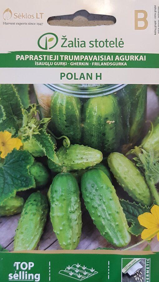Īsaugļu gurķi Polan H