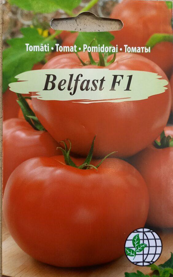 Tomāti Belfast F1