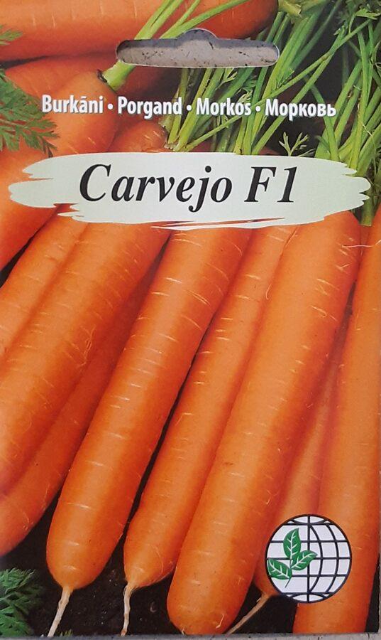 Burkāni Carvejo F1
