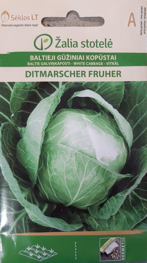 Baltie galviņkāposti Ditmarscher Fruher