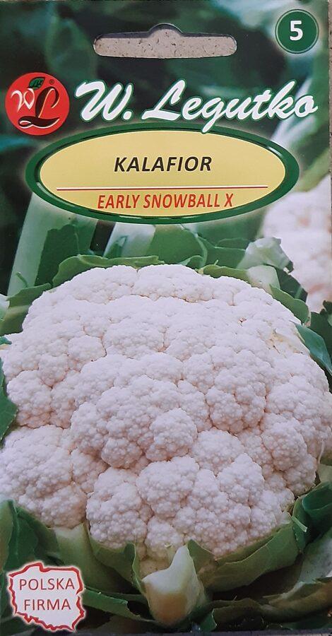 Ziedkāposti Early Snowball X