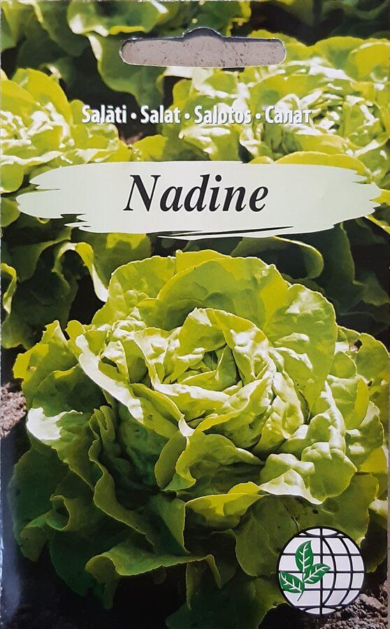 Salāti Nadine