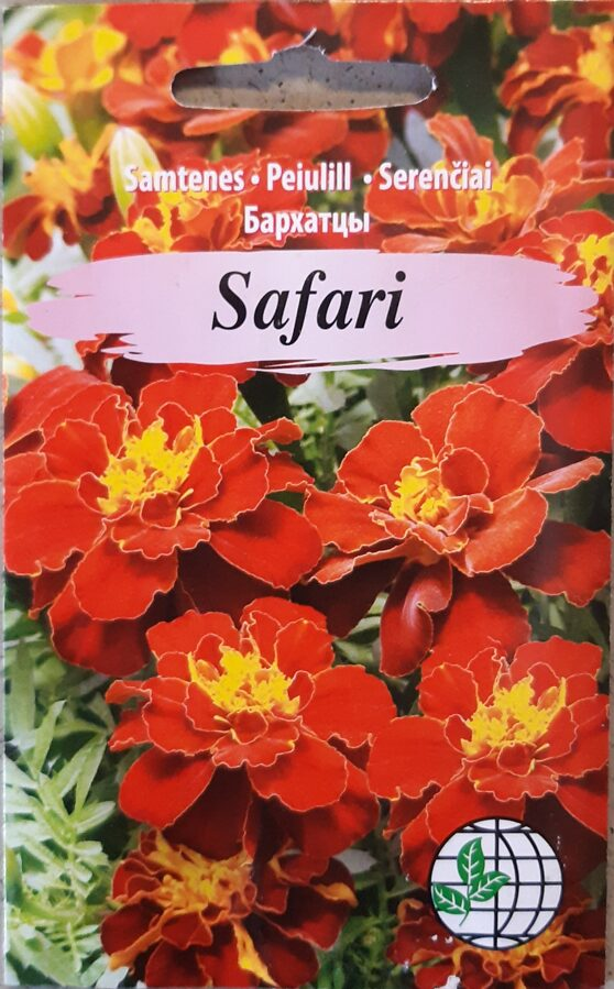 Samtenes Safari