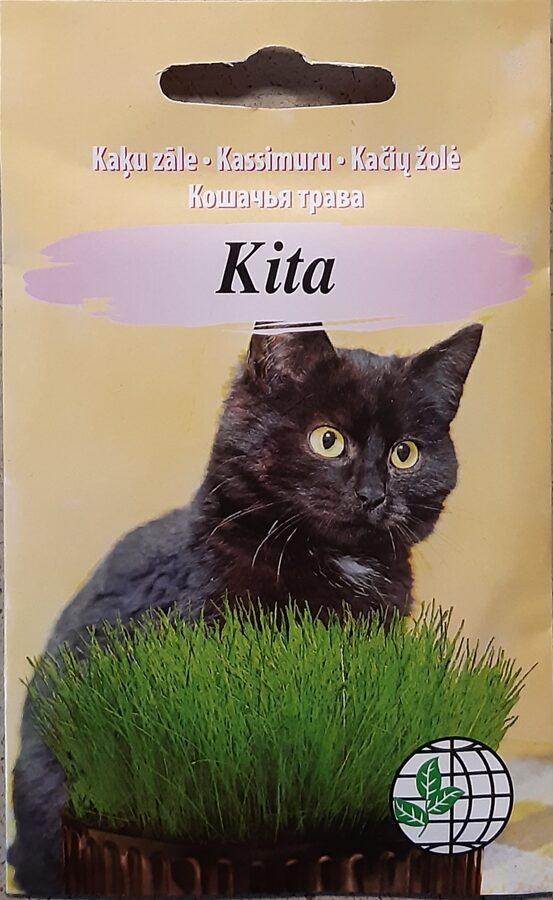 Kaķu zāle