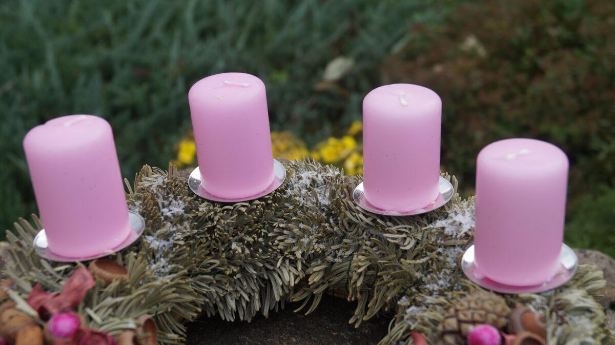 Adventes vainags - rozā brīnums