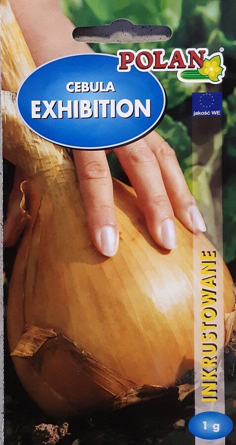 Sīpoli Exhibition