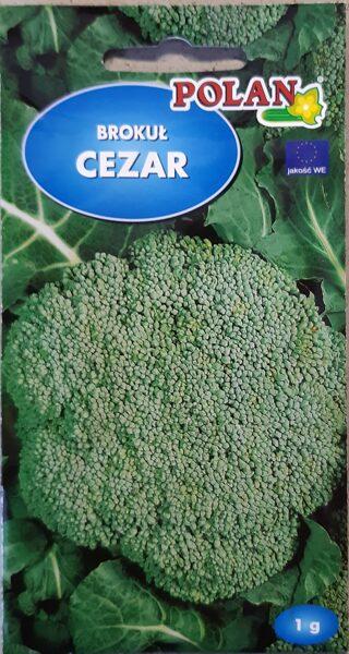 Brokoļi Cezar