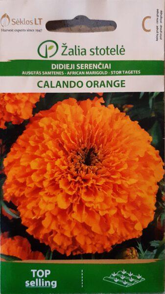 Samtenes augstās Calando Orange